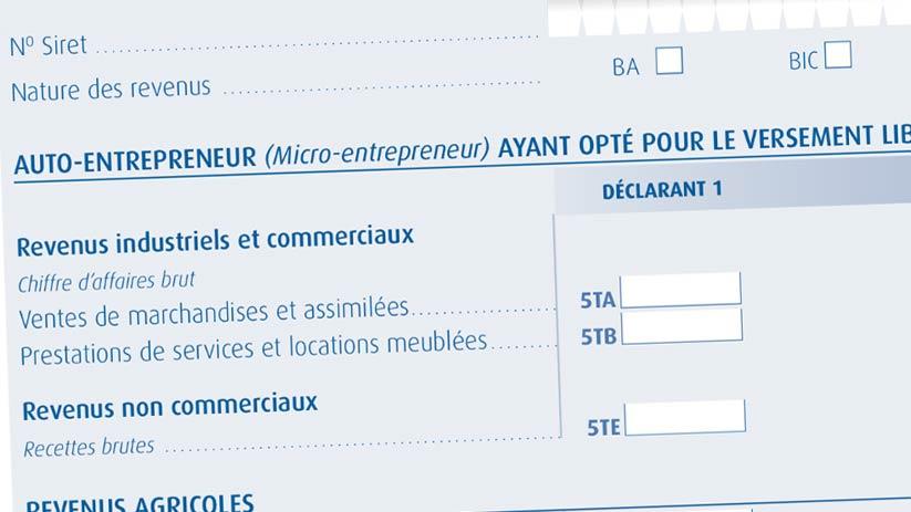 auto entrepreneur guide declaration impot